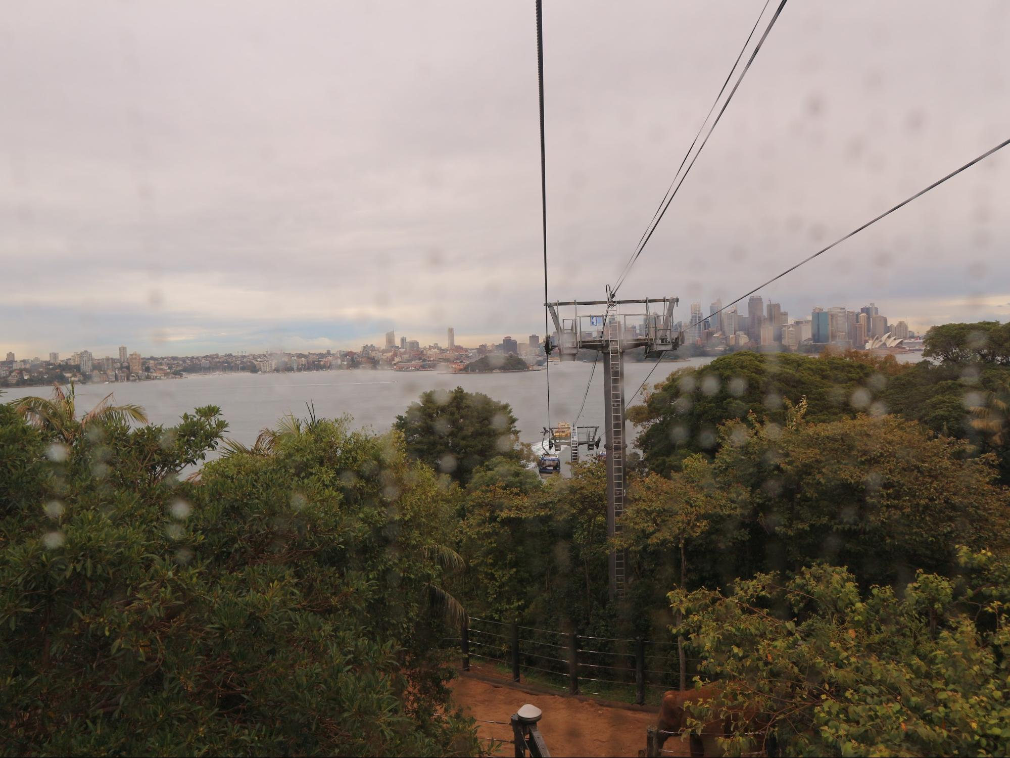 Cable Car in Taronga Zoo